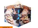 namiot-expresowy-(324)